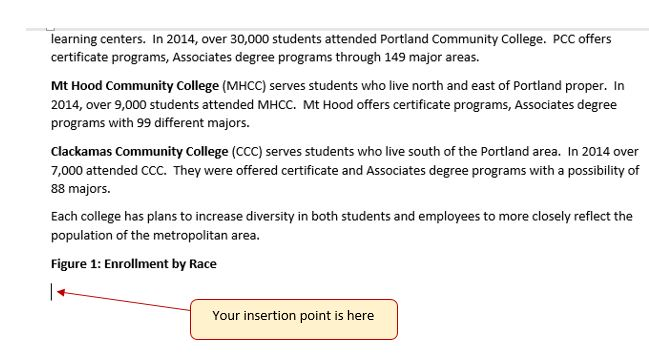 "Insertion point is below ""Figure 1: Enrollment by Race"""